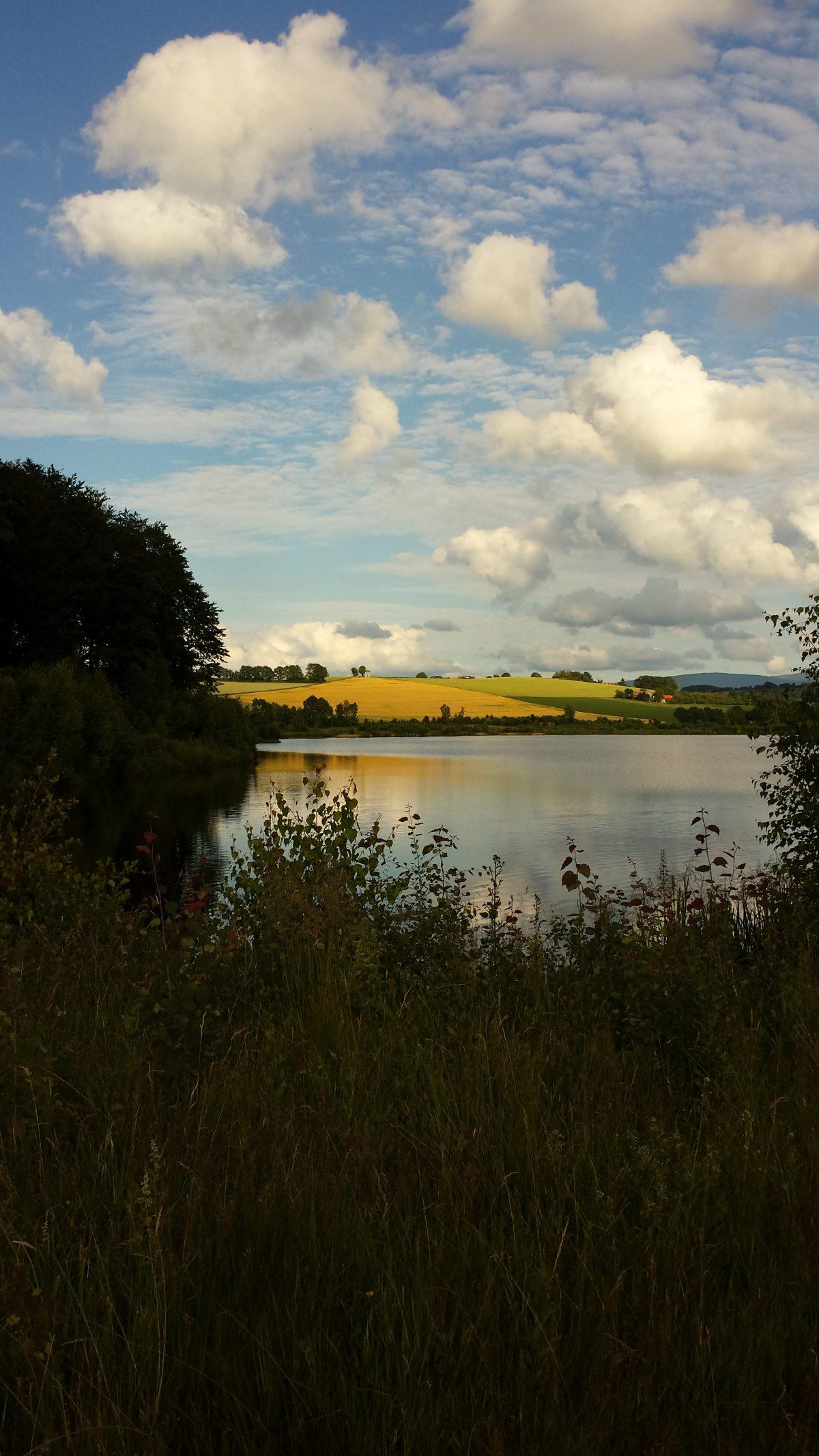 """Hunderunde"": Drachensee Furth im Wald"